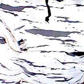 Name:  ice camouflage.jpeg Views: 113 Size:  11.9 KB