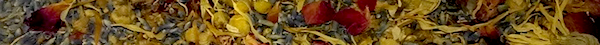 Name:  1 Floral.png Views: 55 Size:  73.3 KB