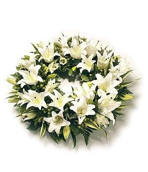Name:  lilies.jpg Views: 60 Size:  66.9 KB