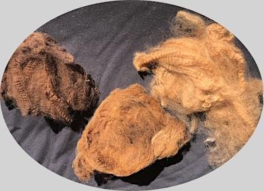 Name:  wool 18j lo.jpg Views: 25 Size:  46.3 KB