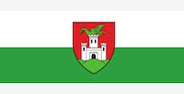 Name:  Ljubljana flag.jpg Views: 22 Size:  16.3 KB