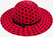 Name:  hat.jpg Views: 114 Size:  45.9 KB