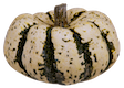 Name:  pumpkin small.png Views: 26 Size:  34.5 KB