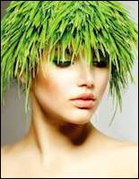 Name:  Hair-f.jpg Views: 92 Size:  56.6 KB