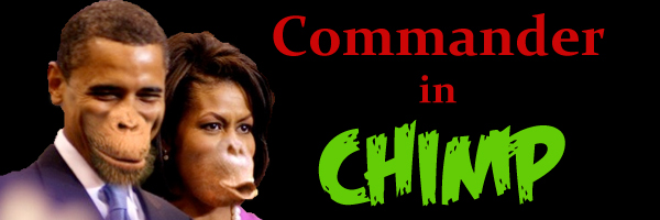 Name:  chimp.jpg Views: 406 Size:  96.3 KB
