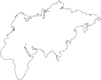 Name:  island.png Views: 74 Size:  25.8 KB